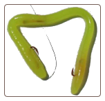 "Yellow Chartreuse 6"" red hooks"